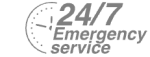 24/7 Emergency Service Pest Control in Poplar, Isle of Dogs, Millwall, E14. Call Now! 020 8166 9746